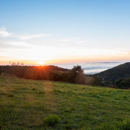 Wir bewahren die Schönheit der Natur um die Region des Feistritztals.